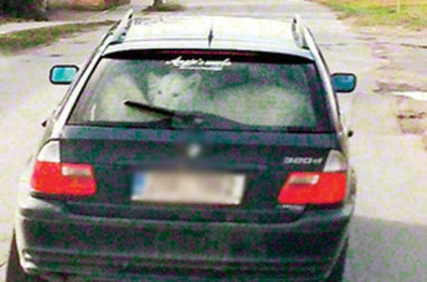 Çek Cumhuriyeti, otomobil ile gezen 2 aslanı konuşuyor
