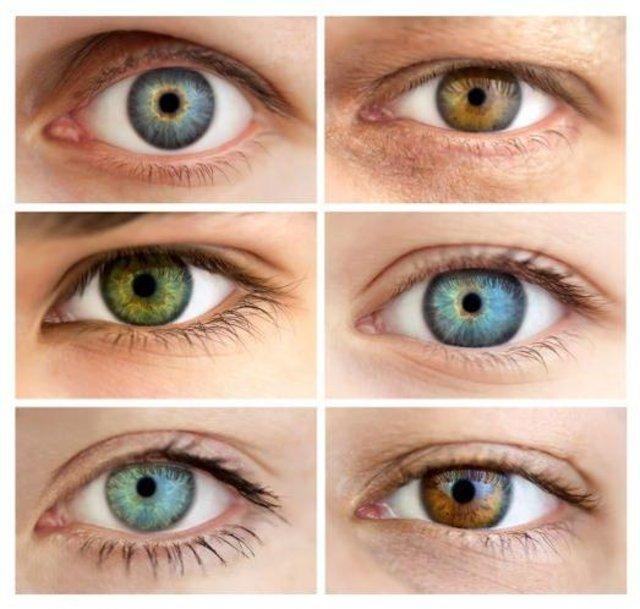 Göz Burun Kulak şekline Göre Karakter Analizi Sağlık Haberleri