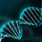 Genlerimizdeki sırlar açığa çıkıyor