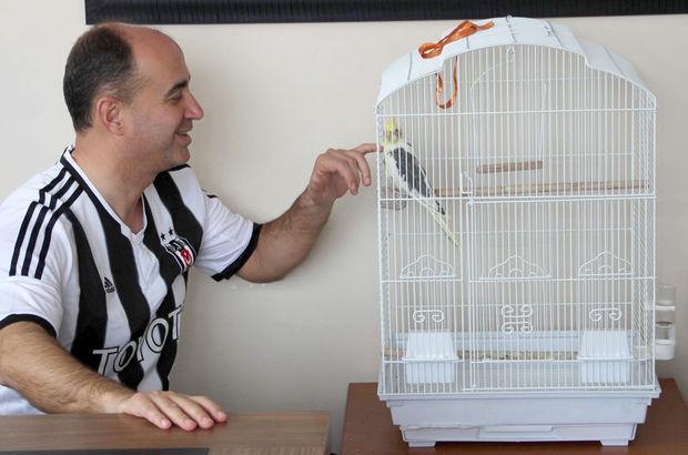Beşiktaşlı papağan Carlos
