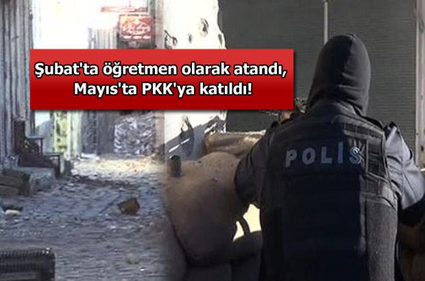 Şubat'ta öğretmen olarak atandı, Mayıs'ta PKK'ya katıldı!