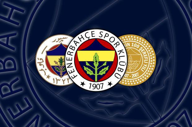 Fenerbahçede Jan Vesely 5-6 hafta yok 80