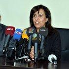 Diyarbakır'da 7 kişiye Nevruz gözaltısı