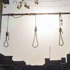 Bulgaristan'da ırkçılar bir evin önüne idam sehpası koydu
