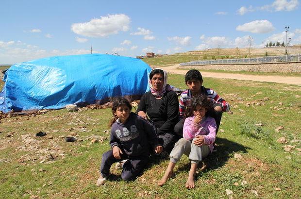 Midyat'ta çadırda yaşayan Kaplan Ailesi Midyat Kaymakamlığı tarafından eve yerleştirildi