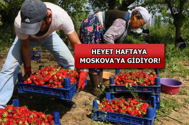 Türk-Rus ilişkilerinde sıcak gelişme: Moskova'ya gidiyorlar