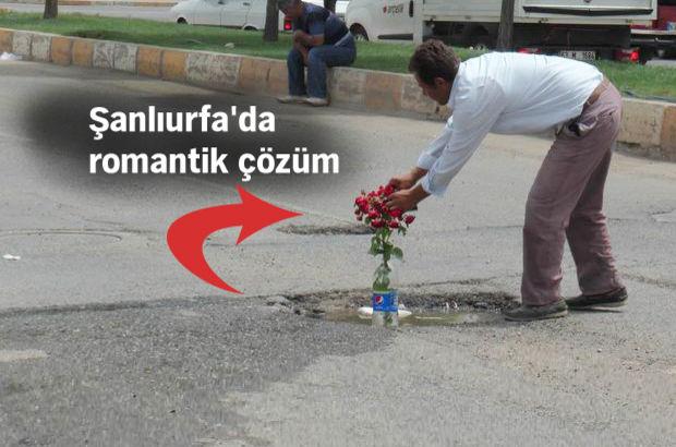 Şanlıurfa'da kaza olmasın diye asfalta gül diktiler