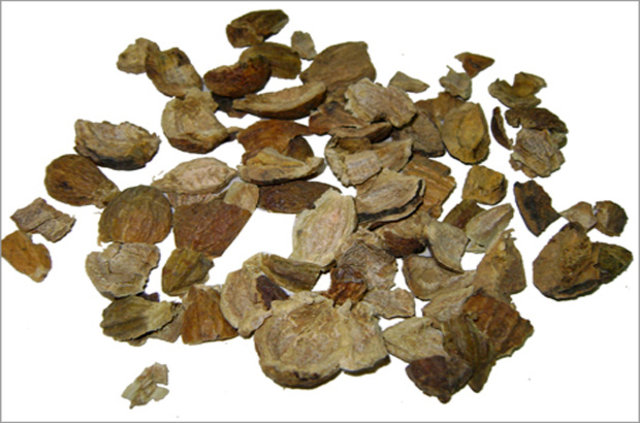 research papers on terminalia chebula Full length research paper antibacterial activity of terminalia chebula fruit antibacterial activity of terminalia chebula fruit ethanol extract using broth micro.