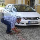 Samsun'da yavru köpeği otomobili ile ezdi