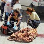 6 yaşındaki minik Enes kamyonetin altında kalarak öldü
