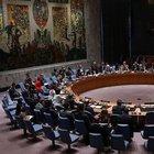 """Rusya, BMGK'de """"Halep"""" bildirisini engelledi"""