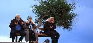 Antalya'da Hıdırellez dilekleri denize atıldı