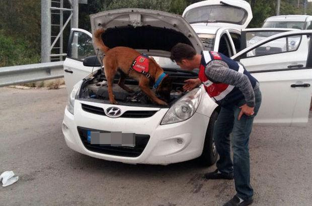 Bodrum'a uyuşturucu taşıyanları böyle yakaladı!
