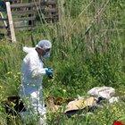 Samsun'da bıçakla öldürülüp yakılmış ceset bulundu
