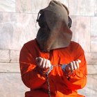 CIA işkence raporlarının yanlışlıkla silindiğini iddia etti