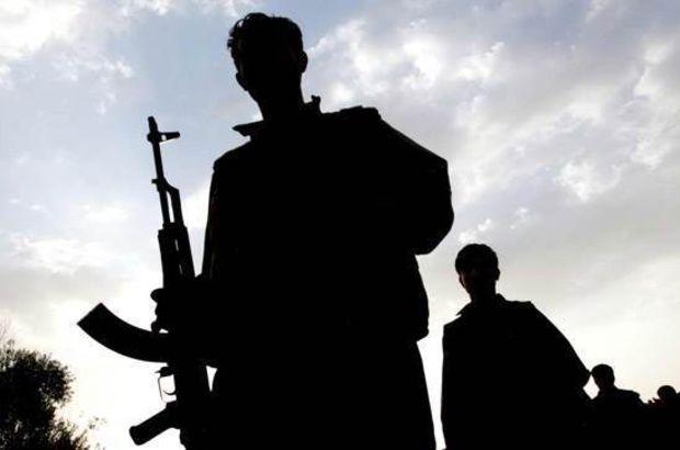 Ağrı'da bir terörist teslim oldu