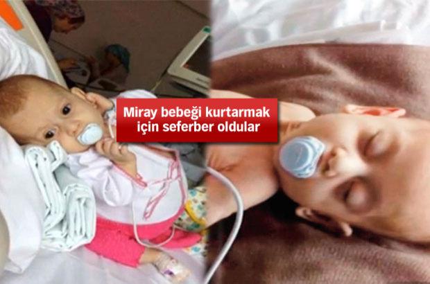 Wolman hastalığına yakalanan Miray bebeğe ilaç bulundu