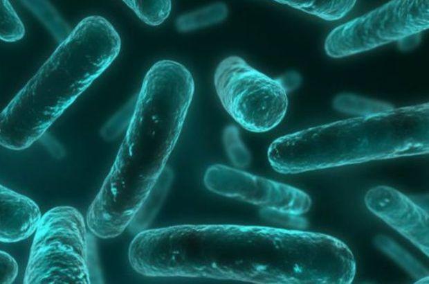 Bakterilerle savaşta devrimsel buluş
