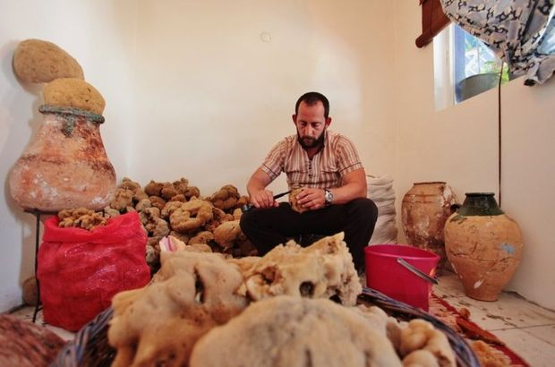 Süngerci İbrahim Totoz son hazırlıklarını tamamladı