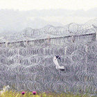 Bulgar sınırında tel duvar çıkmazı