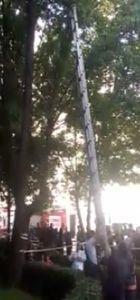 Ağaçtaki kediyi kurtarıp kendi mahsur kalan genci itfaiye kurtardı