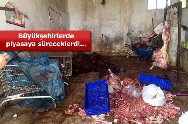 Ramazan öncesi büyük operasyon! 5 ton domuz eti yakalandı!