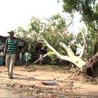Hindistan'ın kuzeyinde fırtına: 24 ölü