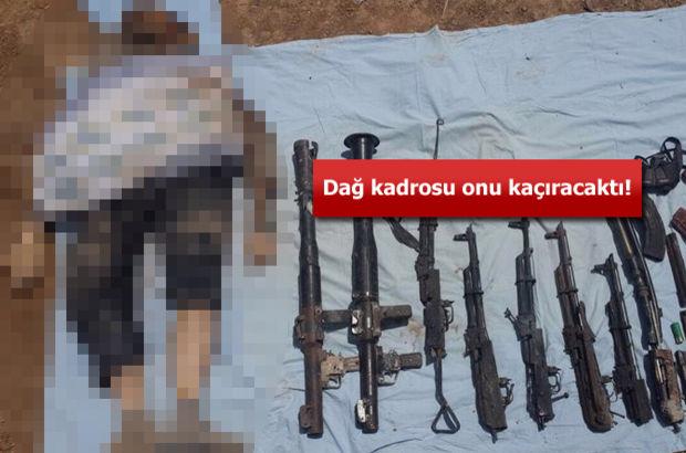 PKK'nın sözde Nusaybin sorumlusu öldürüldü