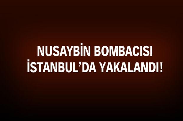 Nusaybin bombacısı yakalandı