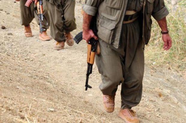 Nusaybin'de PKK'nın sözde üst düzey yöneticisi öldürüldü