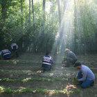 Diyarbakır'da Hevsel Bahçeleri'nde 500 bin kök uyuşturucu yakalandı