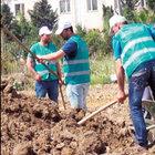 İstanbul'da mahkûmlar için tarım alanı