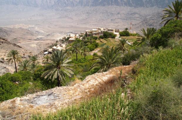 Vekan Köyü
