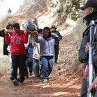 Meksika'da silahlı kişiler aynı aileden 11 kişiyi öldürdü