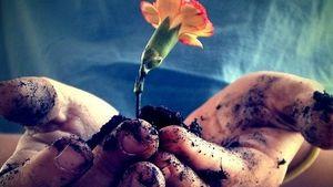 Huzurlu bir hayatın sırrı: Güzel ahlak