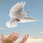 RAMAZAN BİZE ALLAH (CC) YOLUNDA VERMEYİ ÖĞRETİR!