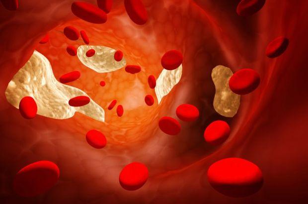 Bilim Dünyasında Yeni Araştırma: Yaşlılarda kolesterolü düşürmek anlamsız bir çabadır!