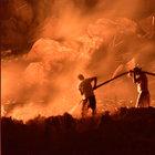 Bodrum'daki orman yangını 24 saat sonra kontrol altına alındı