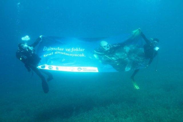 Mustafa Koç Ayvalık'ta dalış etkinliğiyle anıldı