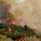 Antalya Kumluca'da yangın yeniden başladı