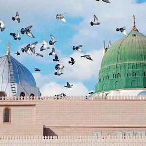 M.Fatih Çıtlak: Kalbini Allah'ın (CC) muhabbetiyle doldur