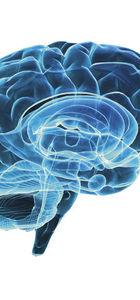 Hafıza güçlendirmek için ne yapılmalı?
