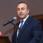 """HDP'den """"orman yangını"""" özrü"""