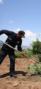 PKK'nın yıllık uyuşturucu geliri 1.5 milyar dolar