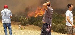 Adrasan'daki yangın kontrol altına alındı