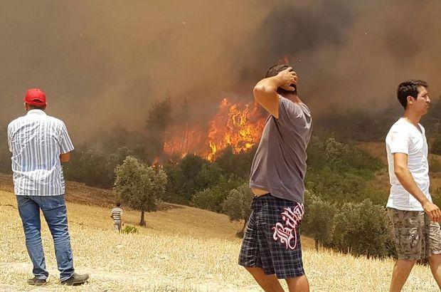 Adrasan ve Olimpos yangını kontrol altına alındı
