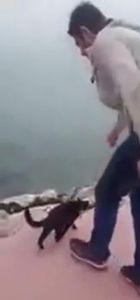 Polis kediyi tekmeleyerek denize atan kişinin peşinde