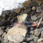 Giresun'da denizden ceset çıktı
