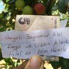 Bursa'da hamile eşi için aldığı meyvelerin parasını ağaca asan kişi konuştu