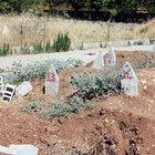 56 PKK'lının cenazesi kimsesizler mezarlığına gömüldü